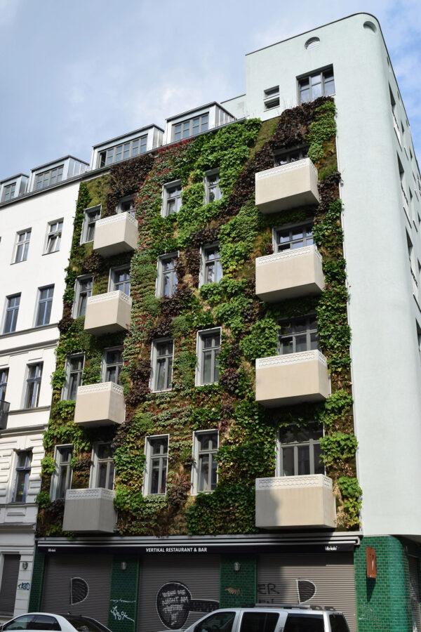 <p>Sauerstofflieferanten in der City: begrünte Fassaden<br> Bild Nr. 6253, Quelle: Bundesverband GebäudeGrün e.V. /BHW Bausparkasse</p>