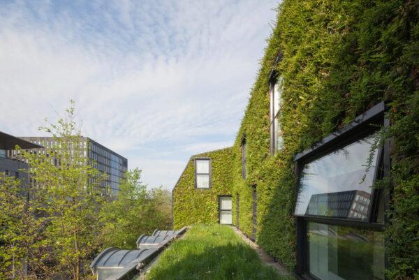 <p>Begrünte Fassaden dienen als Hitzeschild und Wetterschutz<br> Bild Nr. 6375, Quelle: Sempergreen Vertical Systems/BHW Bausparkasse</p>
