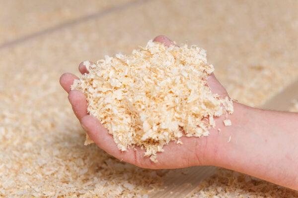 Bauen ohne Schadstoffe: Naturmaterialien wie Holz machen es möglich Bild Nr. 6266, Quelle: www.bauftritz.de/BHW Bausparkasse