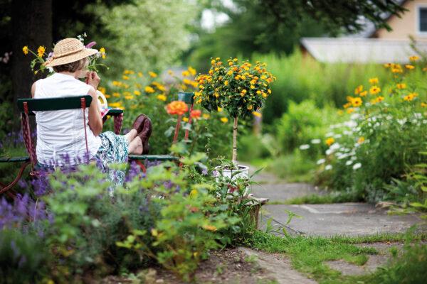 Gärten voller Wildblumen erfreuen nicht nur Menschen, sondern auch Bienen, Hummeln und Co. Bild Nr. 6302, Quelle: Sinnlichtarts, 43718292, Adobe Stock/BHW Bausparkasse