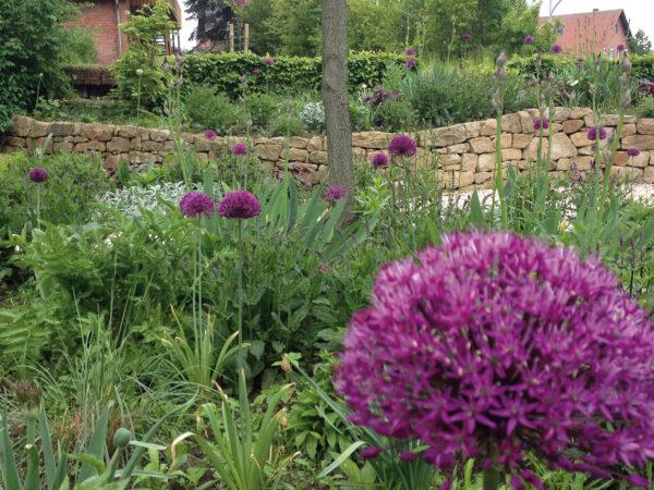 75 Prozent der Gartenbesitzer wollen Kiesflächen in Grün umwandeln Bild Nr. 6303, Quelle: Krumme/BHW Bausparkasse