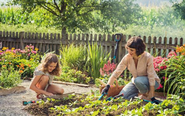 Natur- und Gemüsegärten schaffen ein gutes Klima – weit über den Gartenzaun hinaus!
