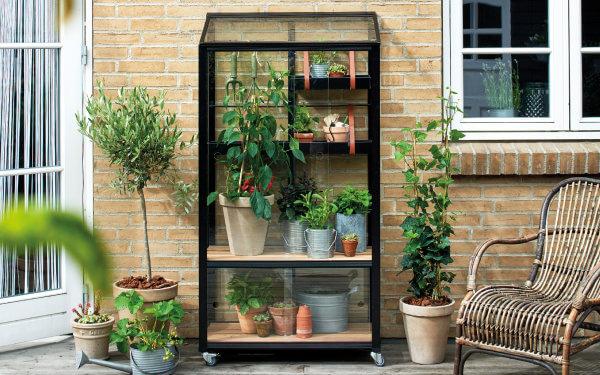 Im Mini-Gewächshaus gedeihen Kräuter und Gemüse auf kleinstem Raum