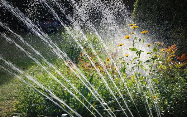Smarte Bewässerungssysteme – optimal in Verbindung mit Zisternen und Regenwassertonnen