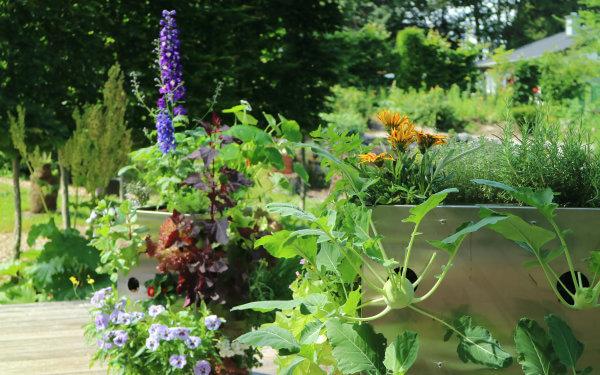 Neuartige Systeme integrieren die Kompostierung, sparen Platz und sehen auch noch gut aus
