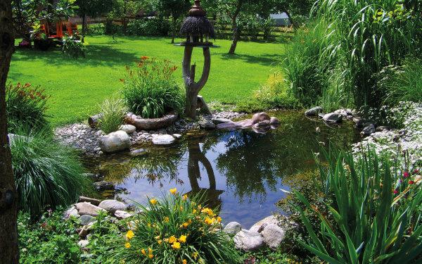 Kleines Paradies im Garten: Ein Teich kühlt die Umgebung ab – und wertet den Garten auf