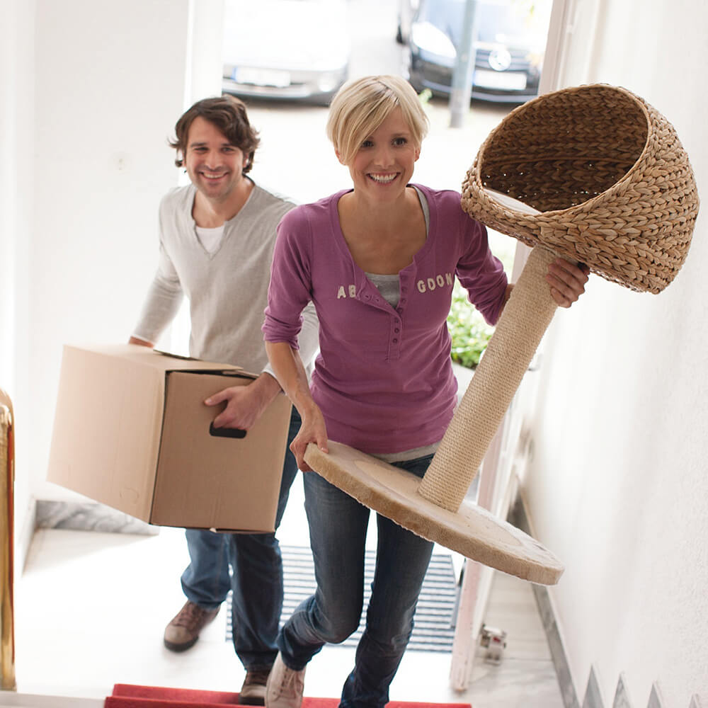 Mieten vs. kaufen – wo sind Immobilien erschwinglich?