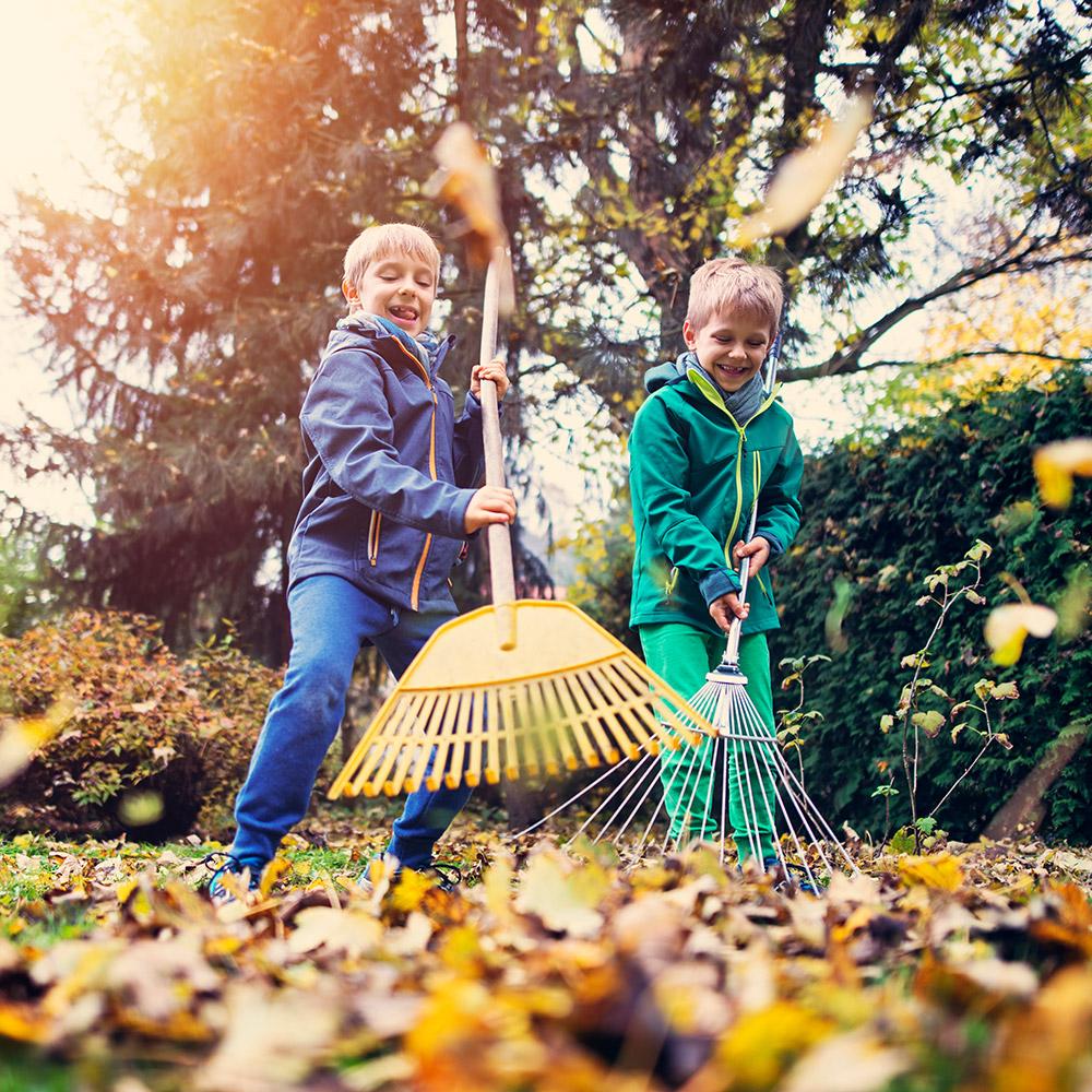Rechte und Pflichten Vermieter Herbst