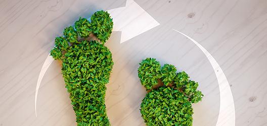 postbank-themenwelten-nachhaltigkeit-528x250.jpg